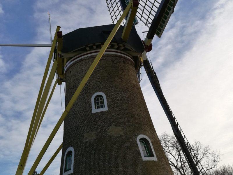 Windmühle in Domburg