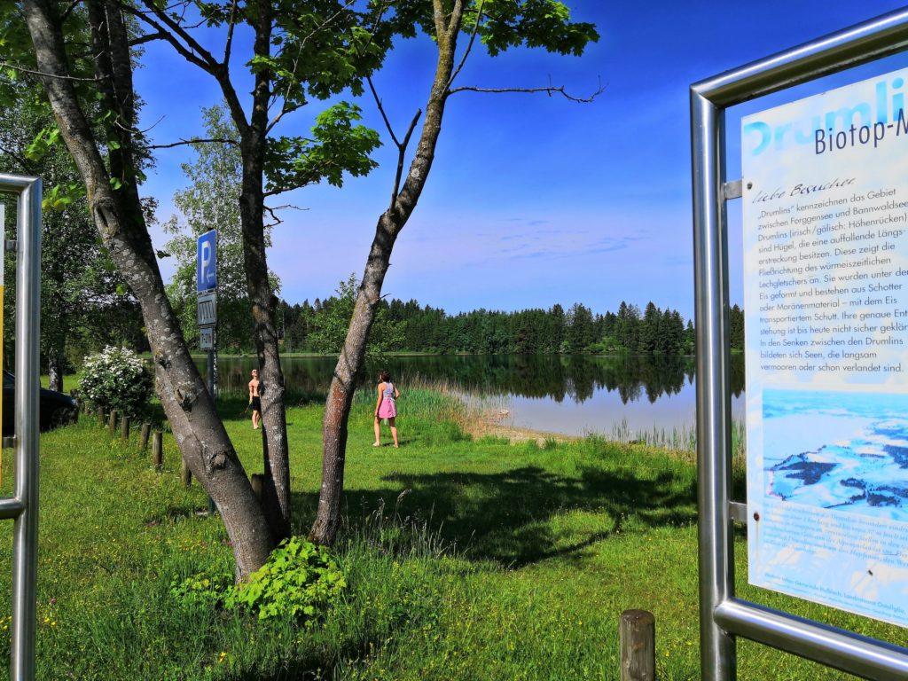 Der Hegratsrieder See - direkt neben dem Forggensee