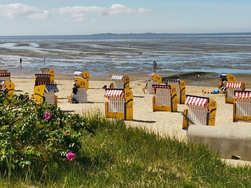 Watt in Cuxhaven und Insel Neuwerk